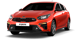 msg_vehicle_forte-hatchback