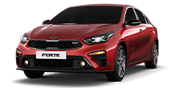 msg_vehicle_forte-sedan